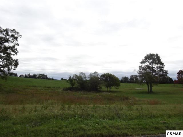 Lot 18 Kaylee Drive, Jefferson City, TN 37760 (#212790) :: Four Seasons Realty, Inc