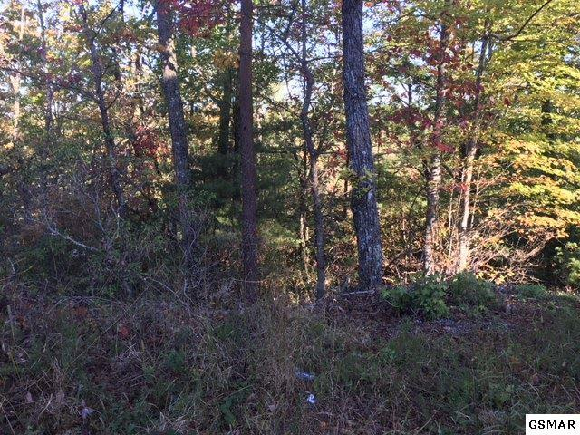 Lot 976 Ridgefield Dr, Sevierville, TN 37876 (#212937) :: Four Seasons Realty, Inc