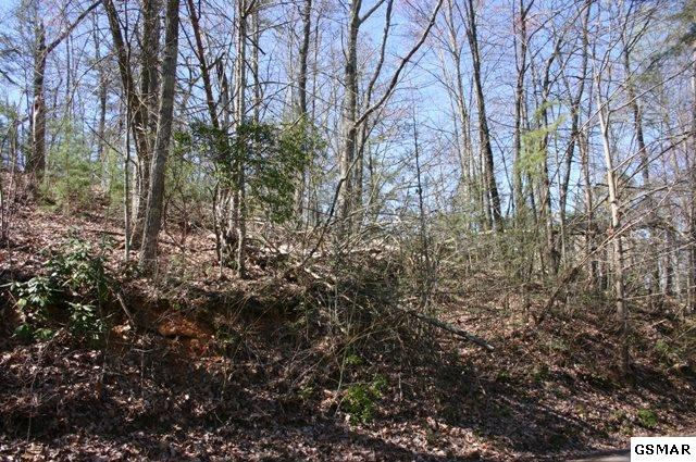Hazy Circle Lot 22, Sevierville, TN 37876 (#213033) :: Billy Houston Group