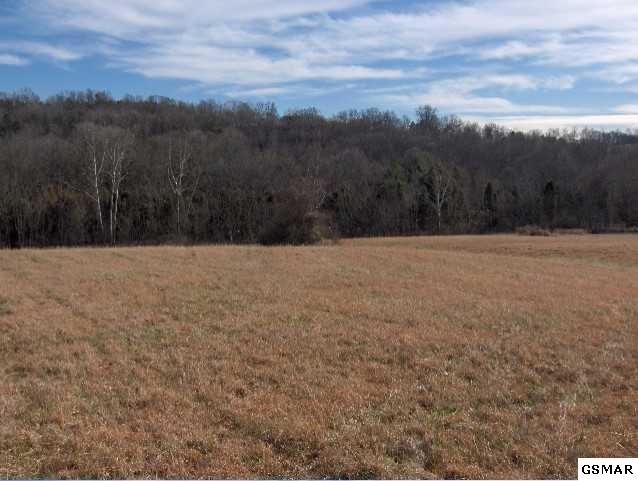 Lot 36 Creswell Rd, Seymour, TN 37865 (#213055) :: Colonial Real Estate