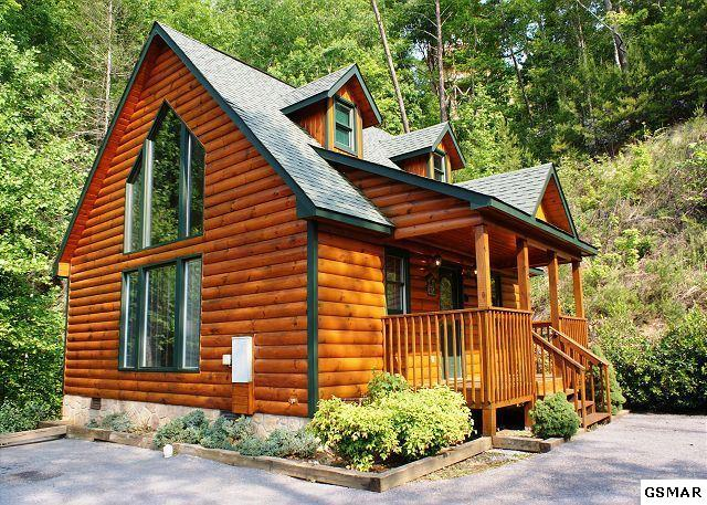 329 Cottage Pinnacle Way Bear Footin', Gatlinburg, TN 37738 (#213201) :: Colonial Real Estate
