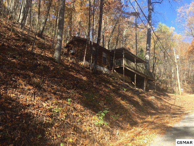 1347 Ski View Ln, Sevierville, TN 37876 (#213228) :: Colonial Real Estate