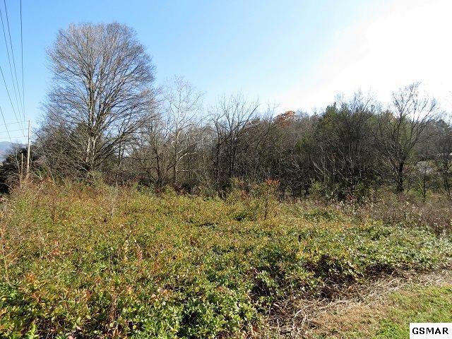 Lower Bogard Rd Lot 1 Spring Va, Newport, TN 37821 (#213304) :: Colonial Real Estate
