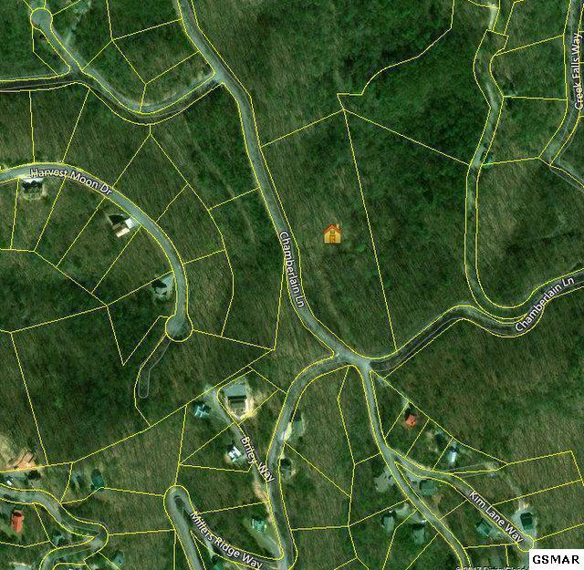 4336 Chamberlain Lane 5.36 ACRES, Sevierville, TN 37862 (#213392) :: The Terrell Team