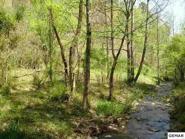 Lower Powdermill Rd., Gatlinburg, TN 37738 (#213474) :: Colonial Real Estate
