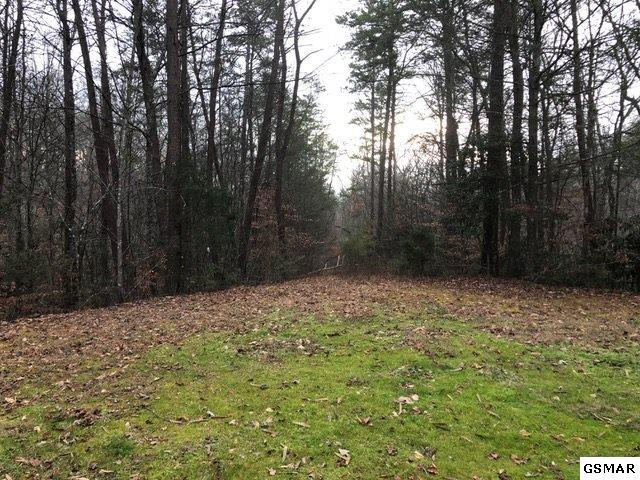 Tract 4 Hidden Cove Way, Sevierville, TN 37876 (#213622) :: Billy Houston Group