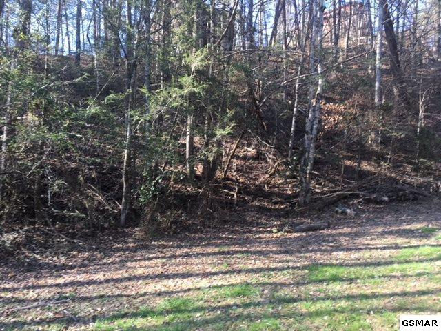 Lot 75 N Spring Hollow Ct, Sevierville, TN 37876 (#213686) :: Four Seasons Realty, Inc