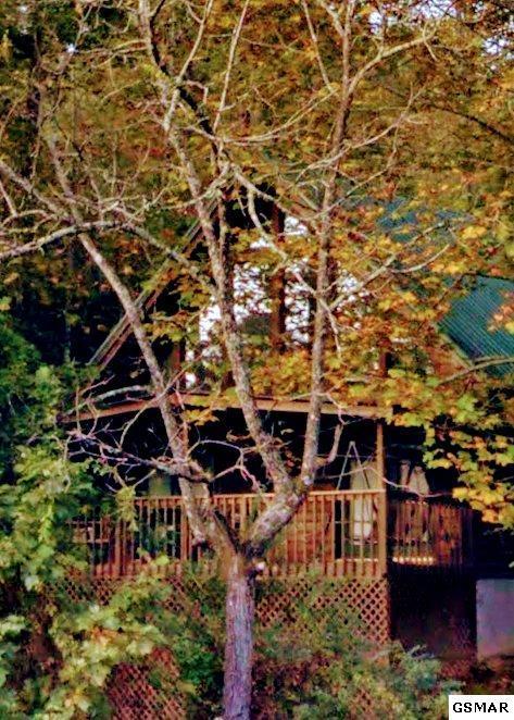 """1705 Brent Hills Blvd """"Lofty Dreams"""", Gatlinburg, TN 37738 (#213750) :: Colonial Real Estate"""