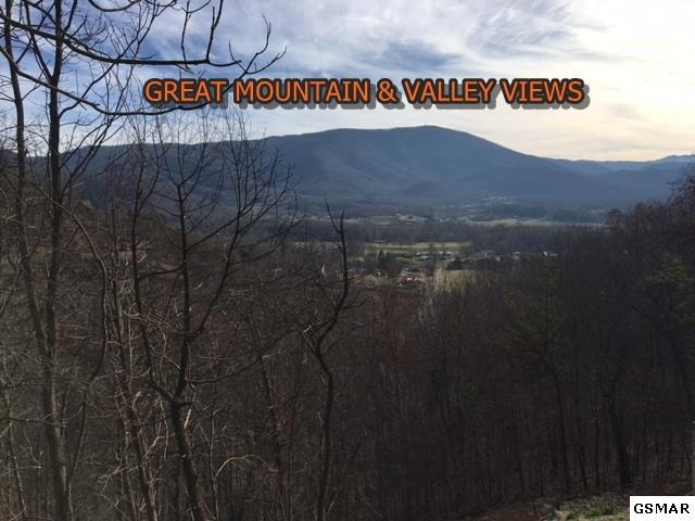MTN TYME WAY 3429, Sevierville, TN 37862 (#213769) :: Billy Houston Group
