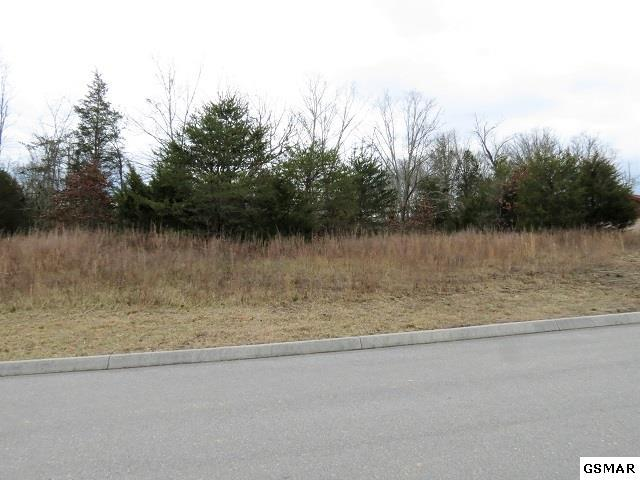 Lot 98 Blue Herring Way, Sevierville, TN 37876 (#214195) :: Colonial Real Estate