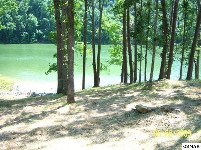 Lot 25 Sanctuary Shores Way, Sevierville, TN 37876 (#214230) :: Colonial Real Estate