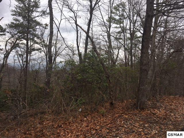 Lot 1279 E View Dr, Sevierville, TN 37876 (#214337) :: Billy Houston Group
