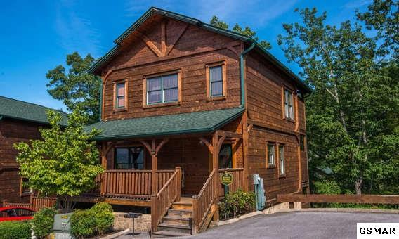 "830 Great Smoky Way ""Mountain Getaw, Gatlinburg, TN 37738 (#214363) :: Colonial Real Estate"