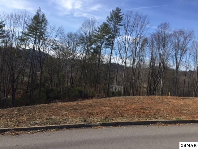 Lot 9 Roundtop Drive, Sevierville, TN 37862 (#214390) :: Billy Houston Group