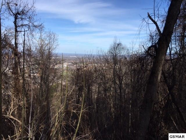 Lot 48 Twin City Way, Pigeon Forge, TN 37863 (#214395) :: Billy Houston Group