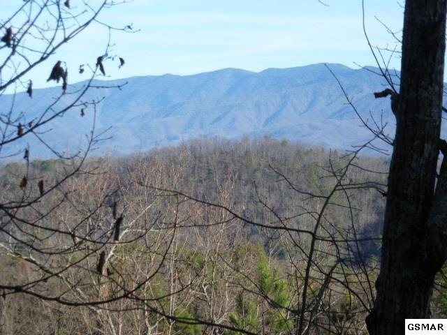 Lt. #7 Mountain Blvd., Sevierville, TN 37876 (#214468) :: Colonial Real Estate