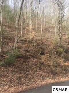 Lot 2 Clear Fork Rd. N., Sevierville, TN 37862 (#214491) :: Billy Houston Group