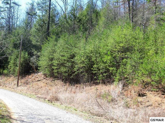 Tr-5 Mossy Cove Way, Sevierville, TN 37876 (#214727) :: Billy Houston Group