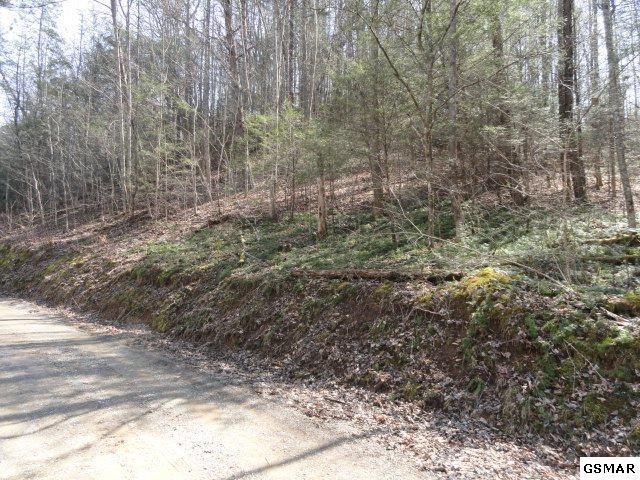 2.63 Ac Sanders Ridge Way, Sevierville, TN 37876 (#214836) :: Colonial Real Estate