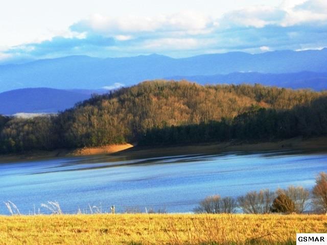 238 Eagle View Drive, Dandridge, TN 37725 (#214922) :: The Terrell Team