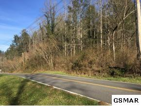 TBD Indian Camp Creek Rd, Cosby, TN 37722 (#215005) :: The Terrell Team
