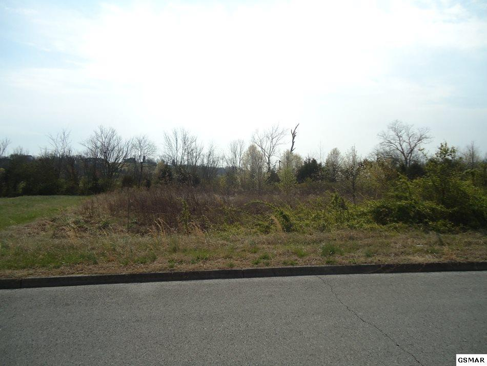 Lot 9-R Fox Meadows Blvd - Photo 1