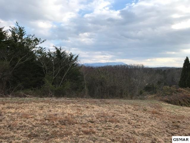 1509 Bluebird Cove Lane Lot 17A, Sevierville, TN 37862 (#215017) :: Billy Houston Group