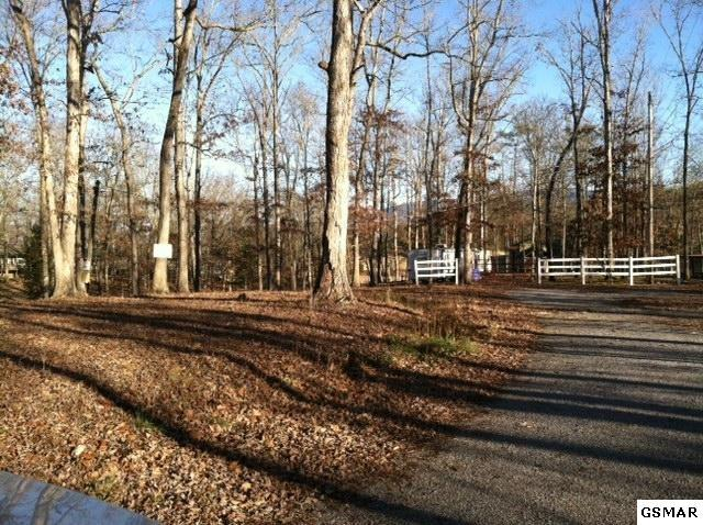 3426 Reba Way, Sevierville, TN 37876 (#215030) :: Colonial Real Estate