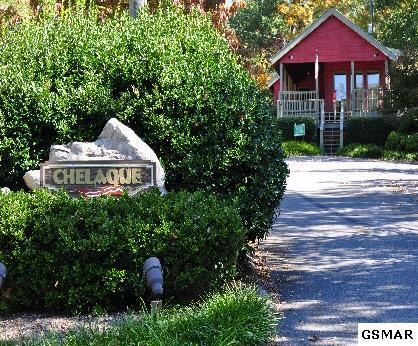 408 Chelaque Way, Mooresburg, TN 37811 (#215099) :: Billy Houston Group