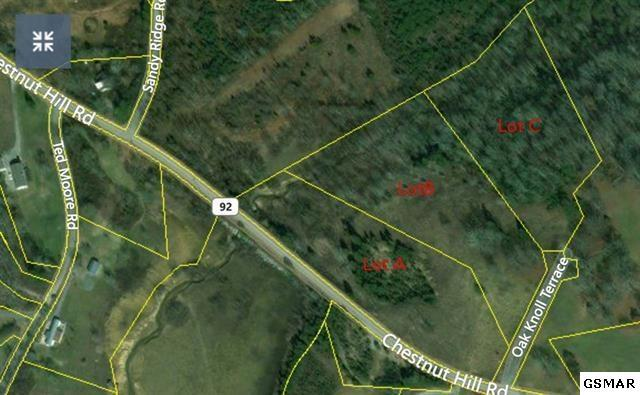 Lot 3 Chestnut Hill Rd, Dandridge, TN 37725 (#215218) :: Billy Houston Group