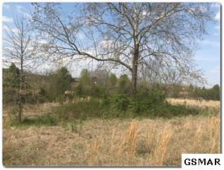 Lot 1 Old Newport Highway, Sevierville, TN 37876 (#215343) :: Billy Houston Group