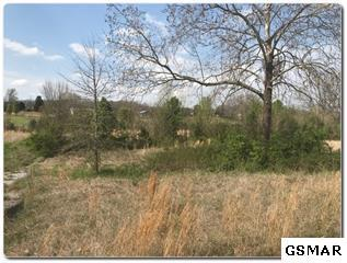 Lot 5 Old Newport Highway, Sevierville, TN 37876 (#215345) :: Billy Houston Group