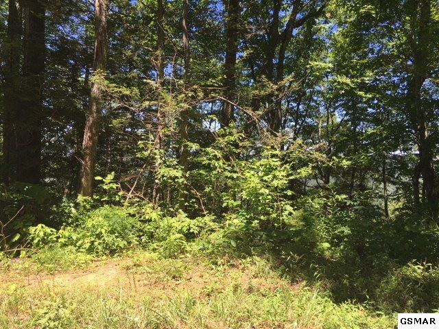 Tract 8 Sulpher Springs Way, Sevierville, TN 37876 (#215561) :: Billy Houston Group