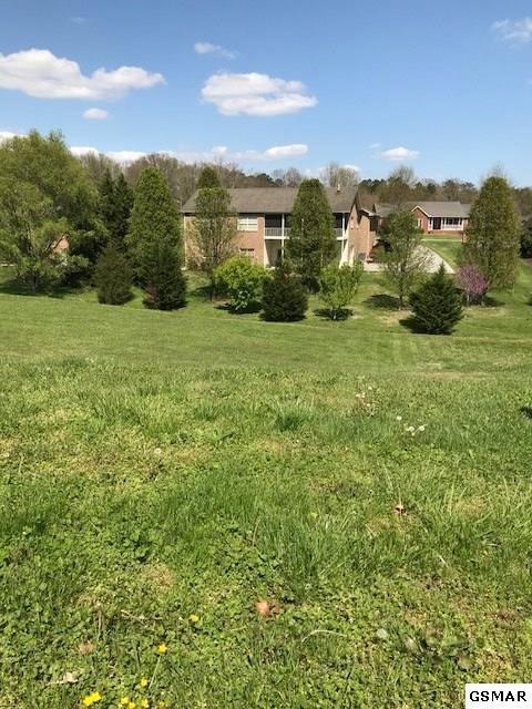 Lot 10 Riverdale Drive, Sevierville, TN 37862 (#215649) :: Colonial Real Estate