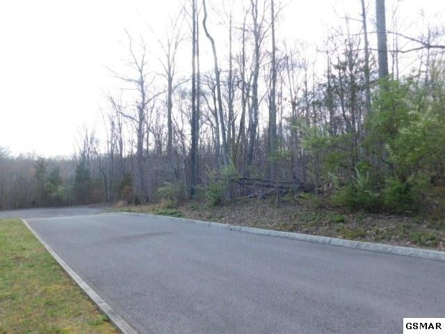 108 Sassafras Grove Lane Lot 5, Rocky Top, TN 37769 (#215657) :: Colonial Real Estate
