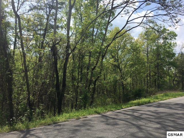 Lot 4 Black Oak Ridge Rd, Sevierville, TN 37876 (#215704) :: Billy Houston Group