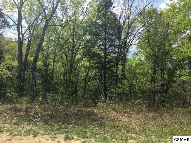 3 Lots Black Oak Ridge Rd, Sevierville, TN 37876 (#215705) :: Billy Houston Group