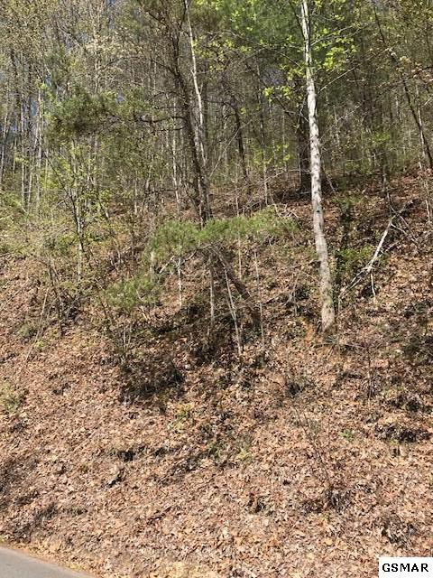 Lot 13 Sunset Road, Sevierville, TN 37862 (#215731) :: Four Seasons Realty, Inc