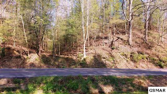 220 Glades Rd, Gatlinburg, TN 37738 (#215813) :: Four Seasons Realty, Inc