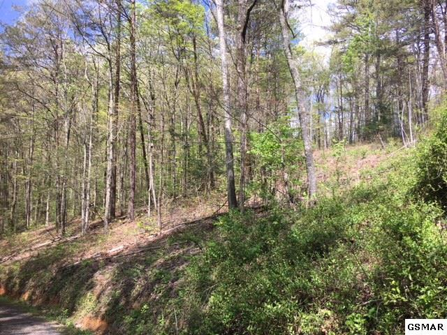 Lot41 Pebbles Mountain Way, Sevierville, TN 37862 (#215898) :: Colonial Real Estate