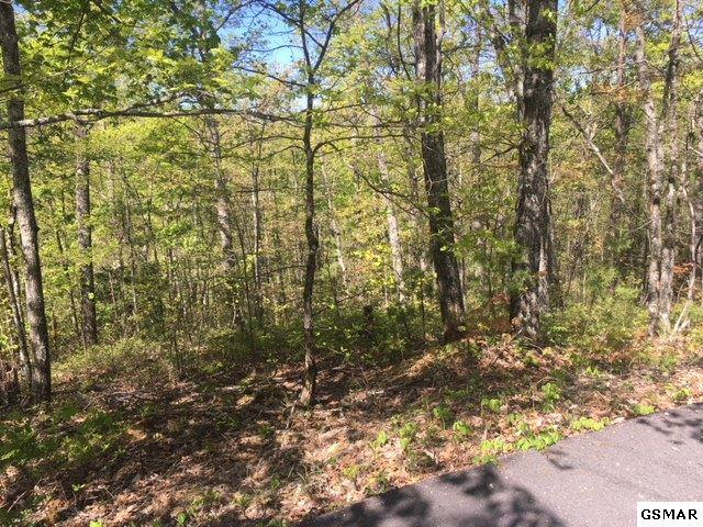 Lot 1108 E View Dr, Sevierville, TN 37876 (#215932) :: Billy Houston Group