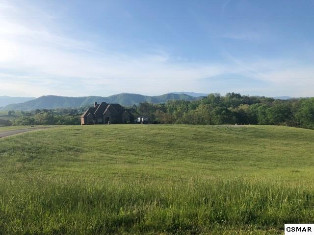 Lot 18 Ledgend View Court, Sevierville, TN 37862 (#215947) :: Billy Houston Group