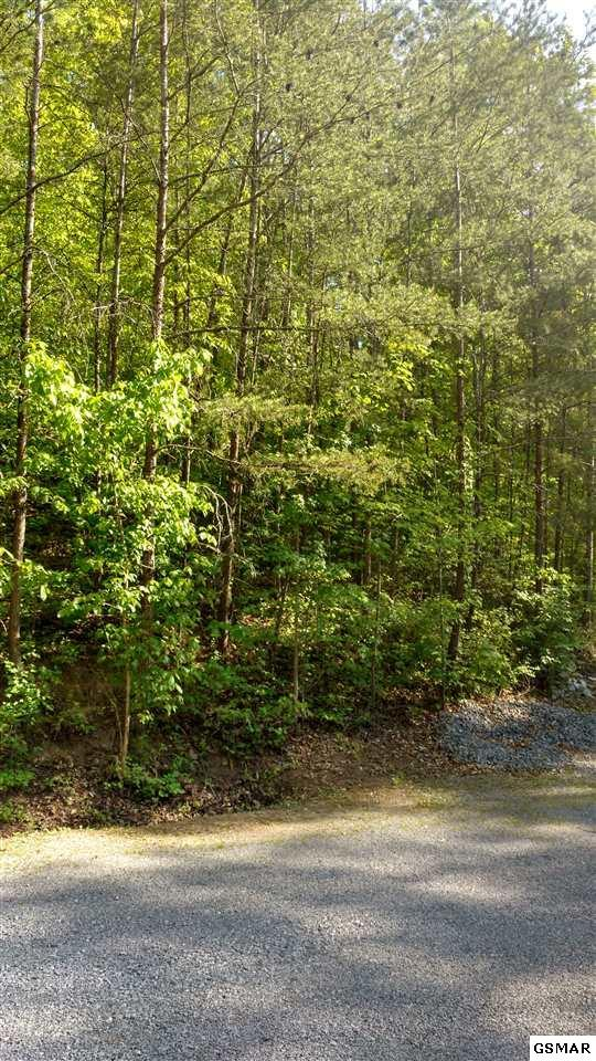 Lot 31 Woodbridge Way, Pigeon Forge, TN 37863 (#216083) :: Colonial Real Estate