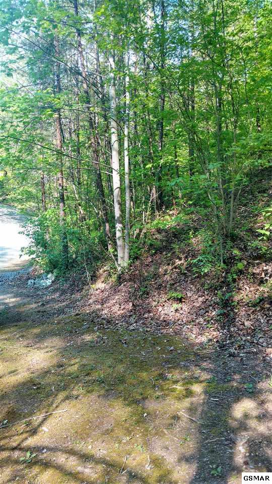 Lot 32 Timber Way, Pigeon Forge, TN 37863 (#216085) :: Colonial Real Estate