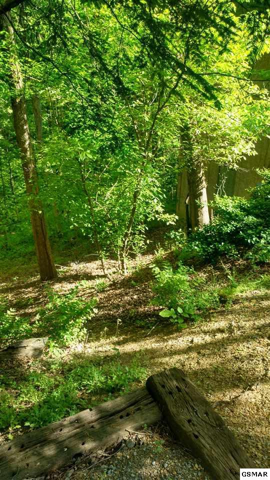 Lot 9 Woodbridge Way, Pigeon Forge, TN 37863 (#216096) :: Colonial Real Estate