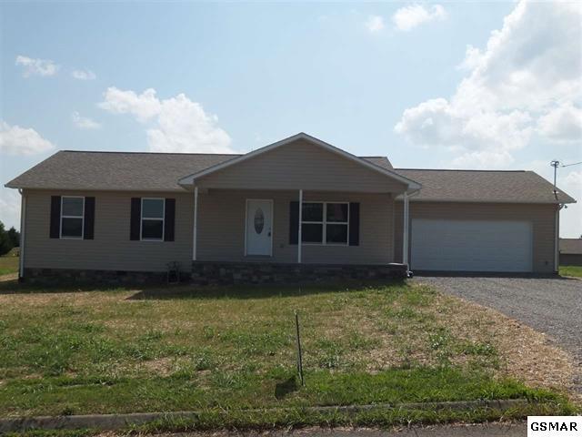911 Caney Hollow Road, Newport, TN 37821 (#216162) :: SMOKY's Real Estate LLC