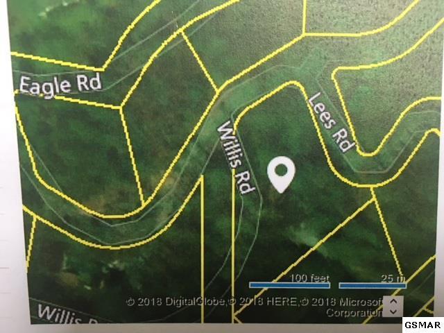 279 Beech Branch Rd. Little Smoky 2, Gatlinburg, TN 37738 (#216312) :: SMOKY's Real Estate LLC
