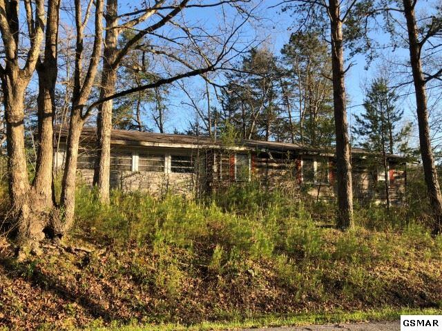 3119 Noland Dr, Pigeon Forge, TN 37863 (#216328) :: Colonial Real Estate