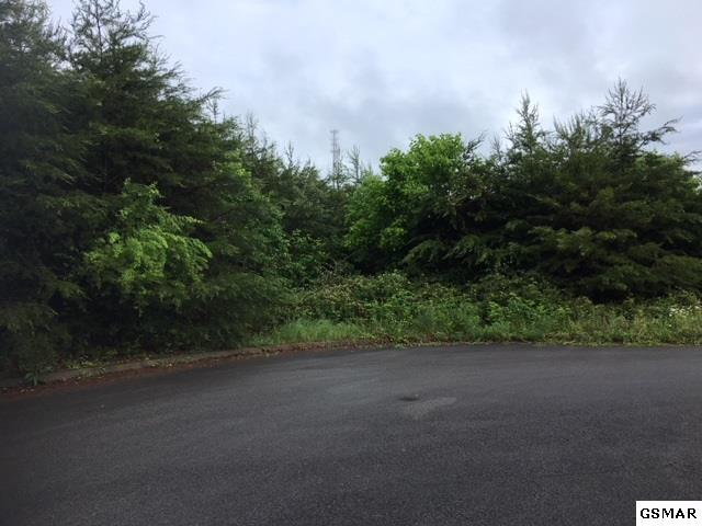 LOT 11 Crystal View Dr, Sevierville, TN 37876 (#216348) :: Billy Houston Group