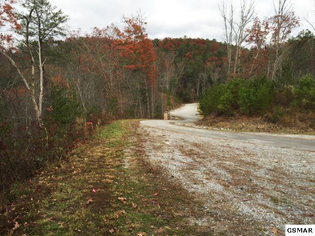 118 Patchbox Way Includes 109 Pa, Walland, TN 37886 (#216374) :: Colonial Real Estate